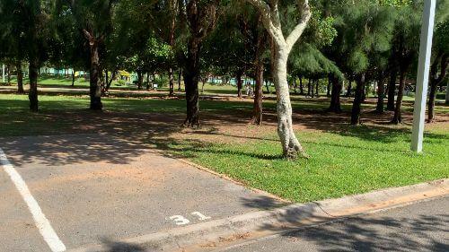 沖縄県総合運動公園 キャンプ場 予約見取り図 区画31