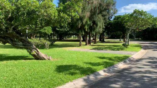 沖縄県総合運動公園 キャンプ場 予約見取り図 区画37