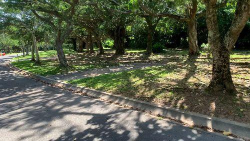 沖縄県総合運動公園 キャンプ場 予約見取り図 区画41