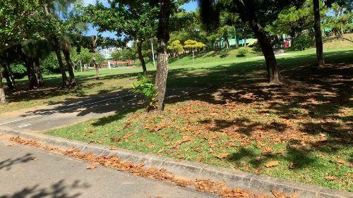 沖縄県総合運動公園 キャンプ場 予約見取り図 区画5