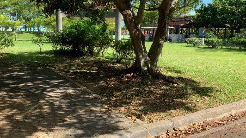 沖縄県総合運動公園 キャンプ場 予約見取り図 区画6